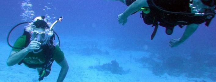 scuba diving antigua